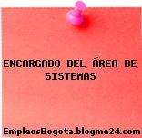 ENCARGADO DEL ÁREA DE SISTEMAS
