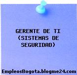 GERENTE DE TI (SISTEMAS DE SEGURIDAD)