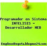 Programador en Sistema INTELISIS – Desarrollador WEB