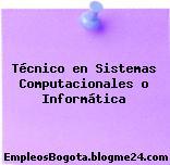 Técnico en Sistemas Computacionales o Informática