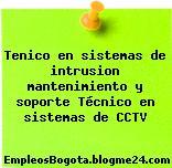 Tenico en sistemas de intrusion mantenimiento y soporte Técnico en sistemas de CCTV