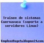 Trainee de sistemas Cuernavaca (soporte a servidores Linux)