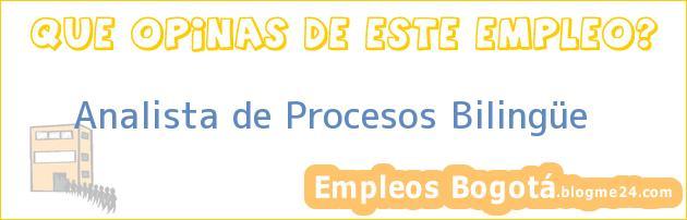 Analista de Procesos Bilingüe