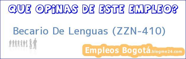 Becario De Lenguas (ZZN-410)
