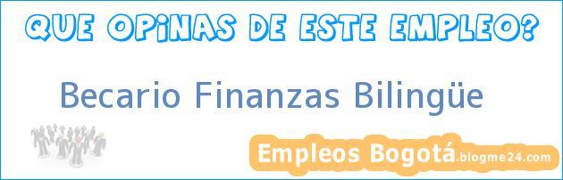 Becario Finanzas Bilingüe