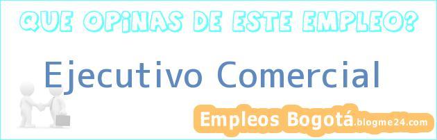 Ejecutivo Comercial