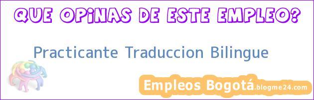 Practicante Traduccion – Bilingue