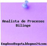 Analista de Procesos Bilinge