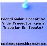 Coordinador Operativo Y de Proyectos (para Trabajar En Tecate)