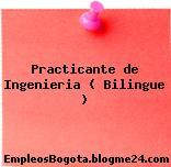 Practicante de Ingenieria ( Bilingue )