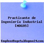 Practicante de Ingeniería Industrial [MDG95]