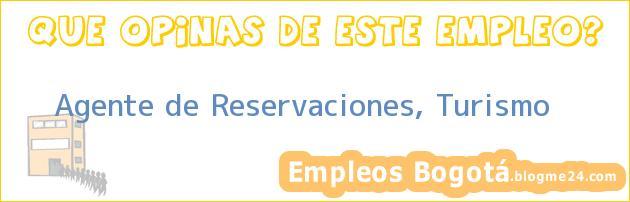 Agente De Reservaciones / Turismo