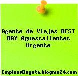 Agente de viajes BEST DAY – Aguascalientes / Urgente
