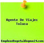 Agente De Viajes Toluca