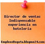 Director de ventas Indispensable experiencia en hoteleria