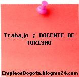 Trabajo : DOCENTE DE TURISMO
