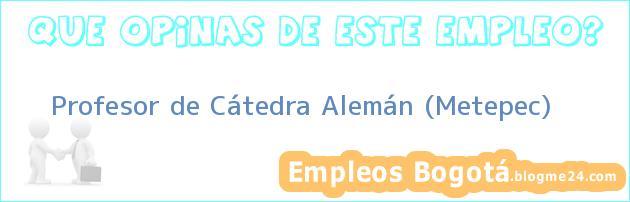 Profesor de Cátedra Alemán (Metepec)