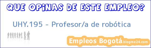 UHY.195 – Profesor/a de robótica