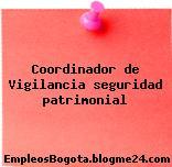 Coordinador de Vigilancia seguridad patrimonial