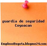 guardia de seguridad Coyoacan
