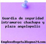 Guardia de seguridad intramuros chachapa y plaza angelopolis