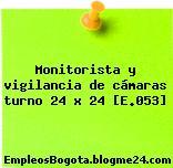 Monitorista y vigilancia de cámaras turno 24 x 24 [E.053]