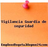 Vigilancia Guardia de seguridad